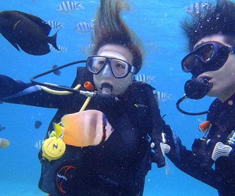 体験ダイブでレンボンガン島の海へ潜りましょう