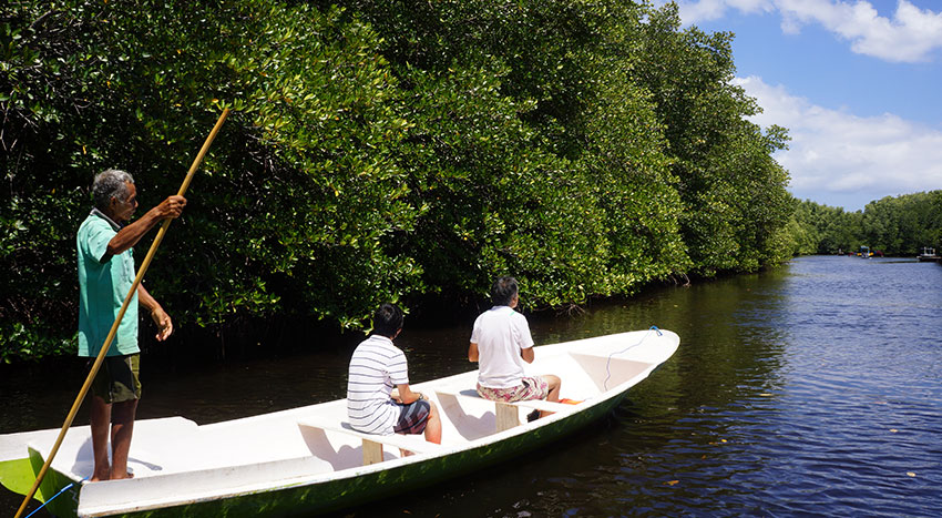 美しいレンボンガン島の自然をお楽しみください