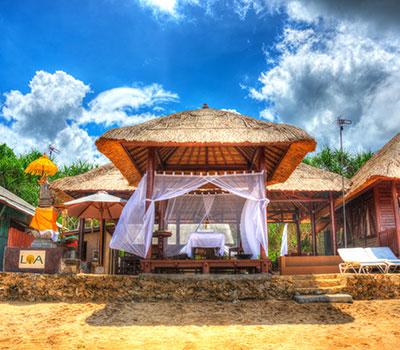 至福のバリ島観光 厳選レンボンガン島 マングローブ林と体験ダイブ LOAマングローブビーチハウス 画像