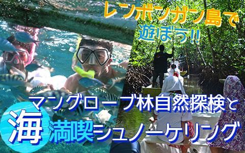 至福のバリ島観光 厳選レンボンガン島 マングローブ林とサンゴ礁とお魚さんがお出迎え「シュノーケリング」ツアー