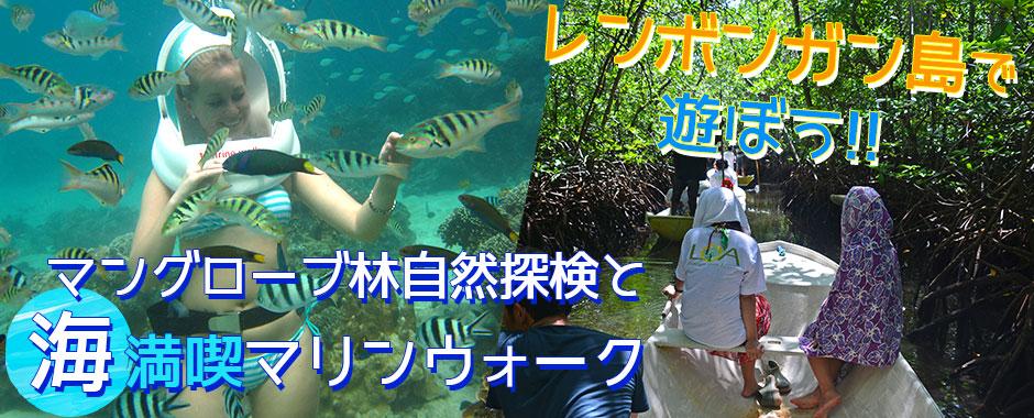 至福のバリ島観光 厳選レンボンガン島 マングローブ林とお魚とサンゴ礁の世界を海中散歩「マリンウォーク・海中写真1枚付き」ツアー