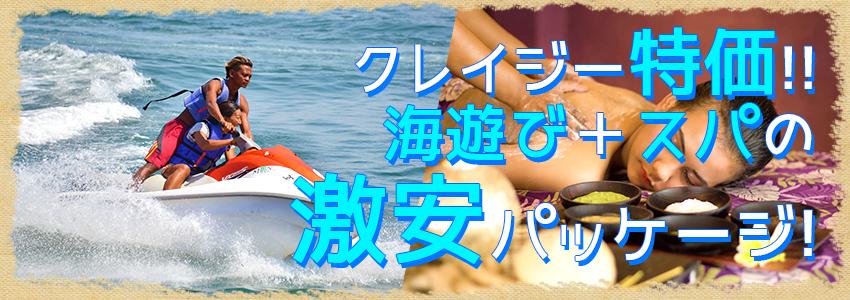 至福のバリ島観光 厳選マリンスポーツ マリンスポーツ乗り放題+ランチ食べ放題+スパ3時間 特徴