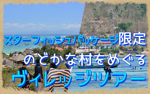 至福のバリ島観光 厳選レンボンガン島 ヴィレッジツアー 特徴