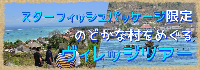 至福のバリ島観光 厳選レンボンガン島 ヴィレッジツアー特徴