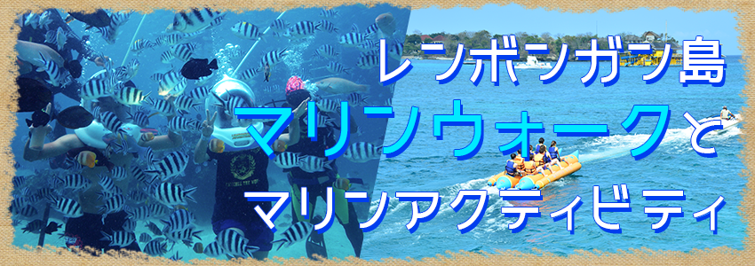 至福のバリ島観光 厳選レンボンガン島 マリンウォーク 特徴