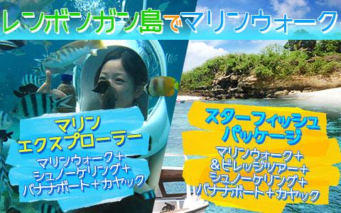至福のバリ島観光 厳選レンボンガン島 マリンウォーク