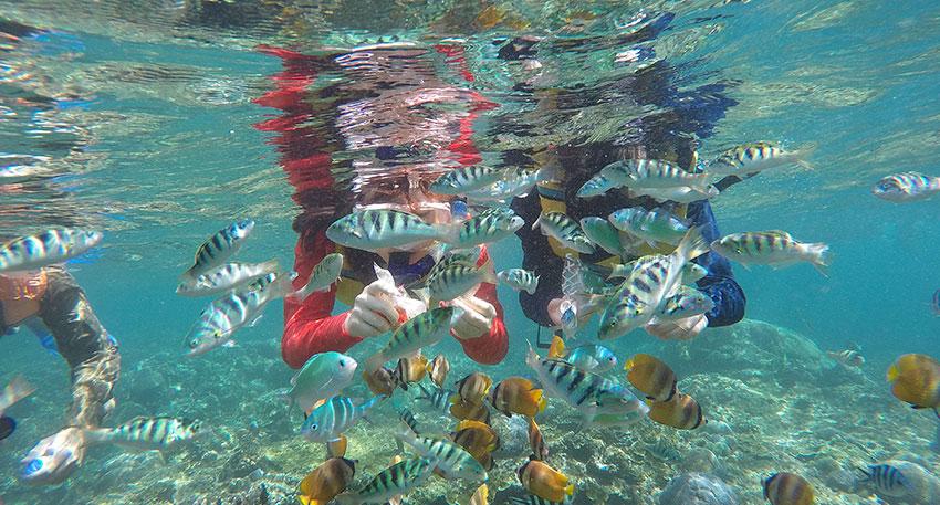 人気ビーチリゾート・レンボンガン島