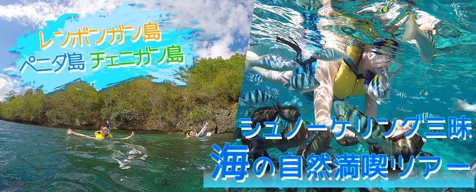 至福のバリ島観光 レンボンガン島+ペニダ島+チェニガン島 シュノーケリング三昧+マングローブツアー+島内巡り