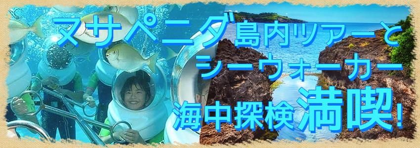 至福のバリ島観光 厳選レンボンガン島 ヌサペニダアイランドツアー+シーウォーカー 特徴
