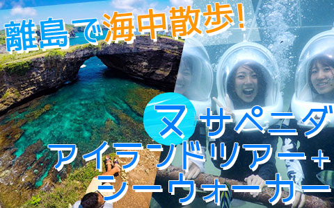 至福のバリ島観光 厳選レンボンガン島 ヌサペニダアイランドツアー+シーウォーカー