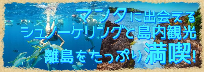 至福のバリ島観光 厳選レンボンガン島 マンタポイントでシュノーケリングとヌサペニダアイランドツアー 特徴