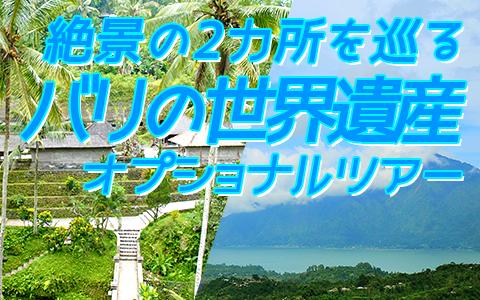 至福のバリ島観光 厳選オプショナルツアー バリの世界遺産 パクリサン河川とキンタマーニツアー 特徴