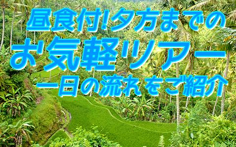 至福のバリ島観光 厳選オプショナルツアー バリの世界遺産 パクリサン河川とキンタマーニツアー 一日の流れ