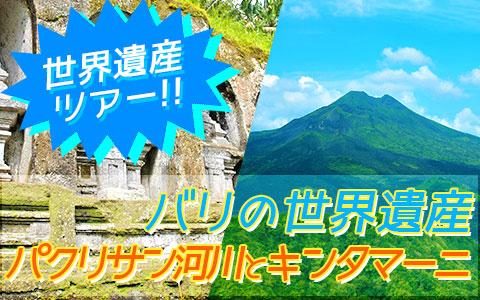 至福のバリ島観光 厳選オプショナルツアー バリの世界遺産 パクリサン河川とキンタマーニツアー