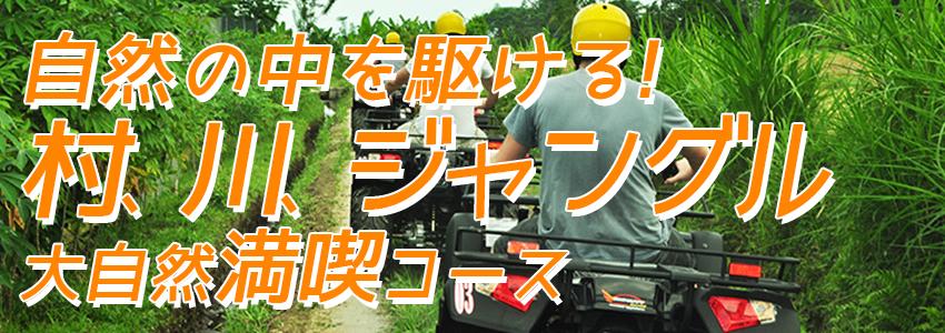 至福のバリ島観光 厳選アクティビティ Pertiwi Quad Adventure ATVライド 特徴