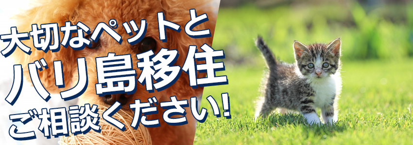 至福のバリ島観光 厳選 ペット(犬、猫等)移住 特徴