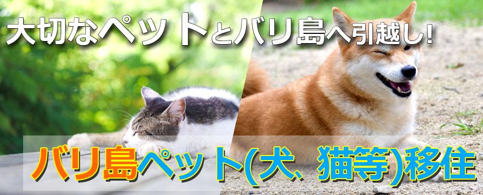至福のバリ島観光 厳選 ペット(犬、猫等)移住