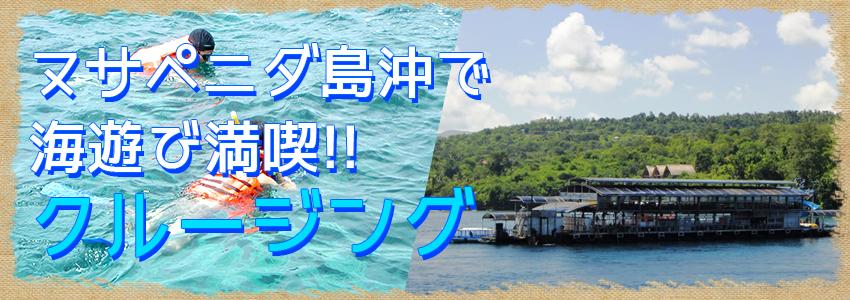 至福のバリ島観光 厳選クルージング クイックシルバー デイクルーズ 特徴