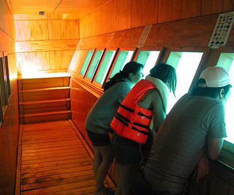 水中回廊は海の中をガラス越しに見ることができます