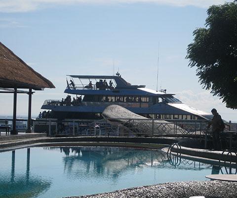 浮島まで大型のクルーズ船で向かいます