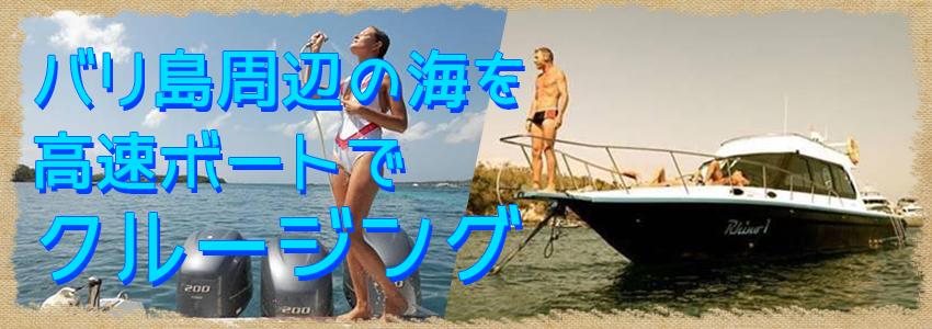 至福のバリ島観光 厳選ボートチャーター Rhino クルーズ 特徴