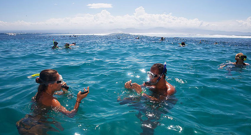 青く透明度の高い海が特徴です