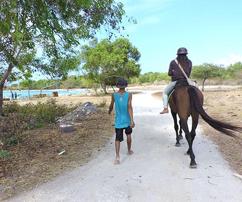 景色を楽しみながら乗馬を体験