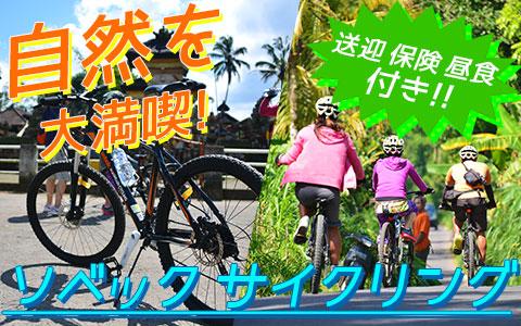 至福のバリ島観光 厳選アクティビティ ソベック サイクリング