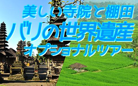至福のバリ島観光 厳選オプショナルツアー バリの世界遺産 タマンアユンとライステラスツアー 特徴