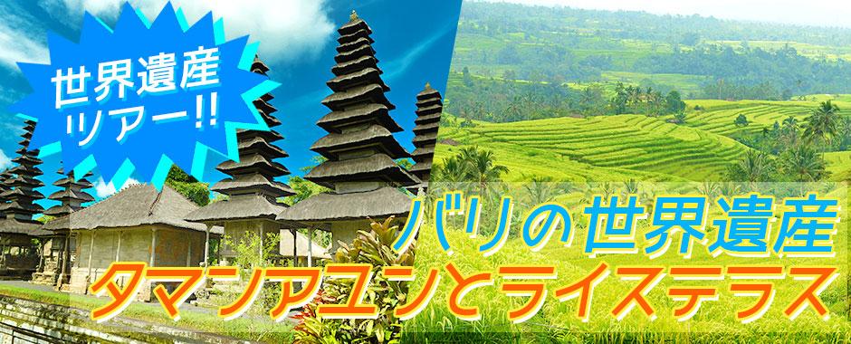 至福のバリ島観光 厳選オプショナルツアー バリの世界遺産 タマンアユンとライステラスツアー