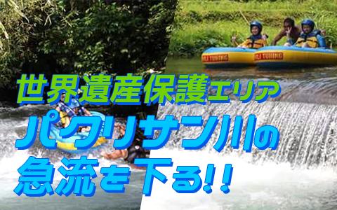 至福のバリ島観光 厳選アクティビティ バリ タロ アドベンチャー チュービング 特徴