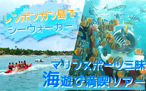 至福のバリ島観光 厳選レンボンガン島 トレジャーハント with シーウォーカー