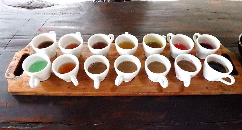 様々な種類のコーヒーの試飲が可能