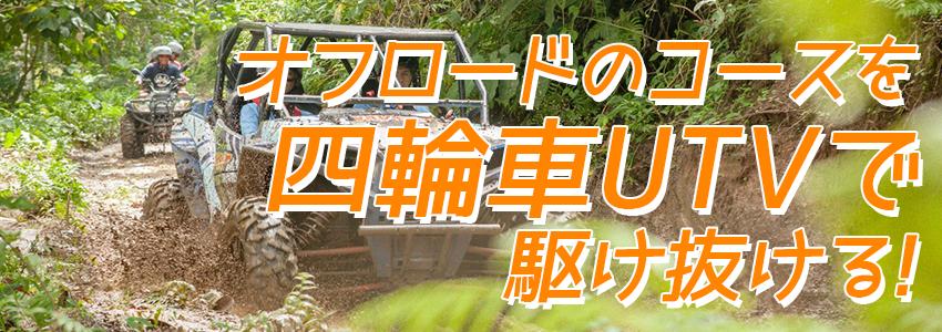 至福のバリ島観光 厳選アクティビティ BALI UTVアドベンチャー 特徴