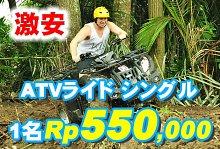 バリ島 厳選アクティビティ Pertiwi Quad Adventure ATVライド