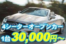 バリ島 厳選カーチャーター ベンツ E250クラスカブリオレ