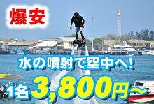 バリ島 厳選マリンスポーツ フライボード