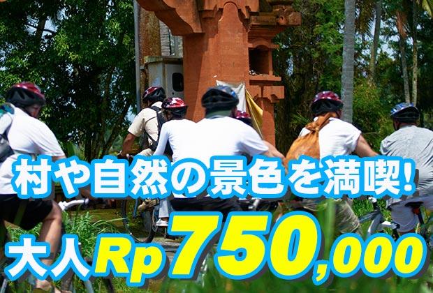 バリ島 観光バリ島の美しい自然の景色を堪能!アユンリバー サイクリング