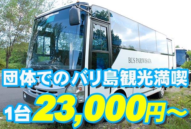 バリ島 観光団体様に快適なバリ島観光!中型バス