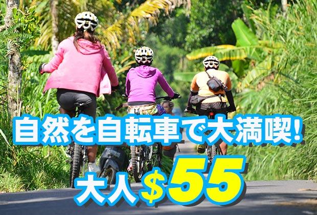 バリ島 観光バリ島の自然や伝統を感じられるコース!ソベック サイクリング