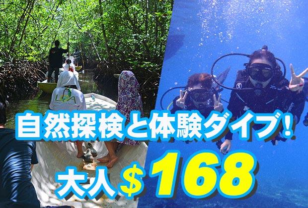 バリ島 観光マングローブ林とサンゴ礁やキレイなお魚さんがお友達「体験ダイブ(ボートエントリー)」ツアー