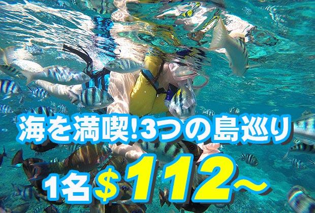 シュノーケリング三昧+マングローブツアー+島内巡り